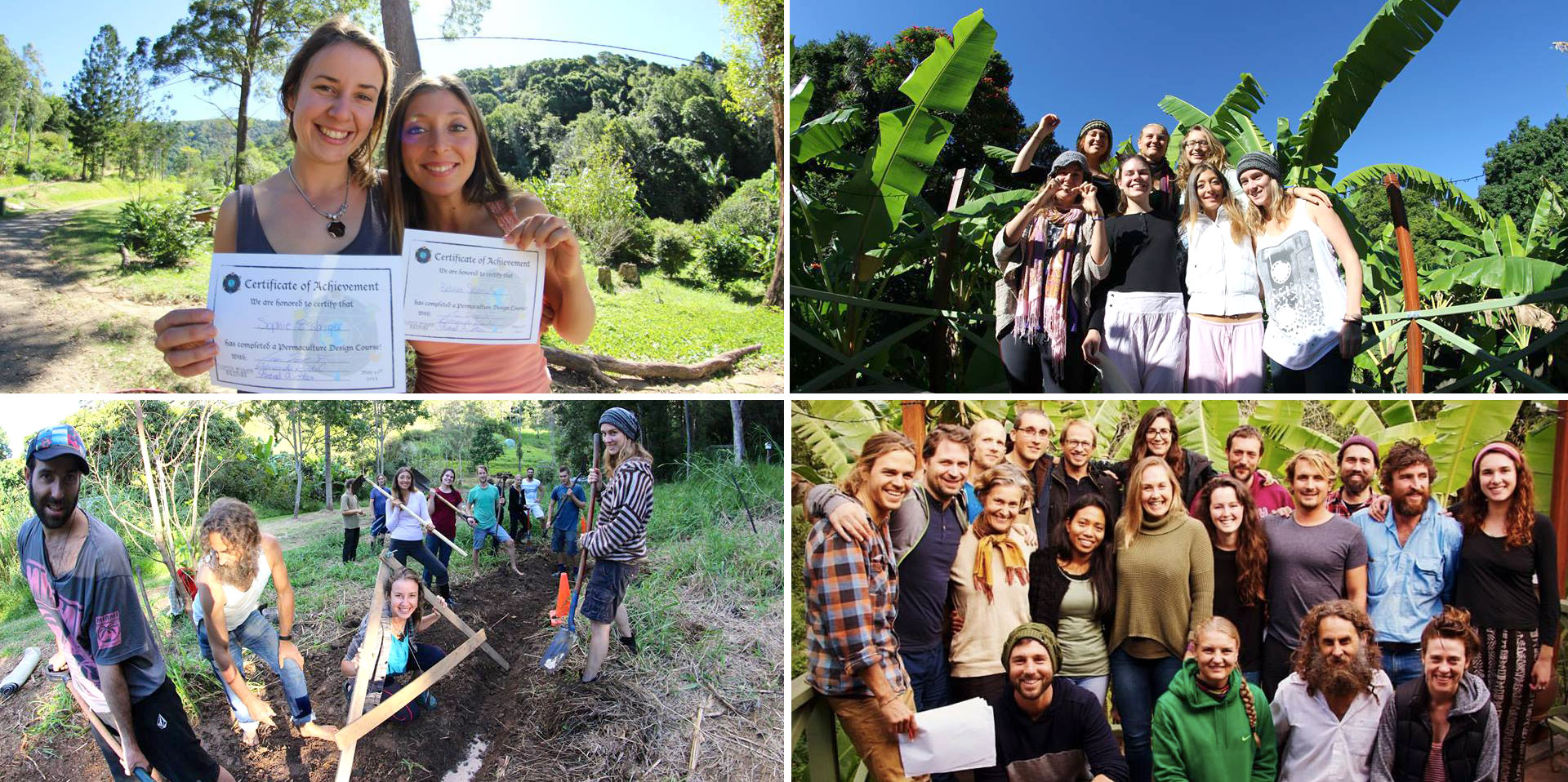 Study Permaculture Australia at Noosa Forest Retreat
